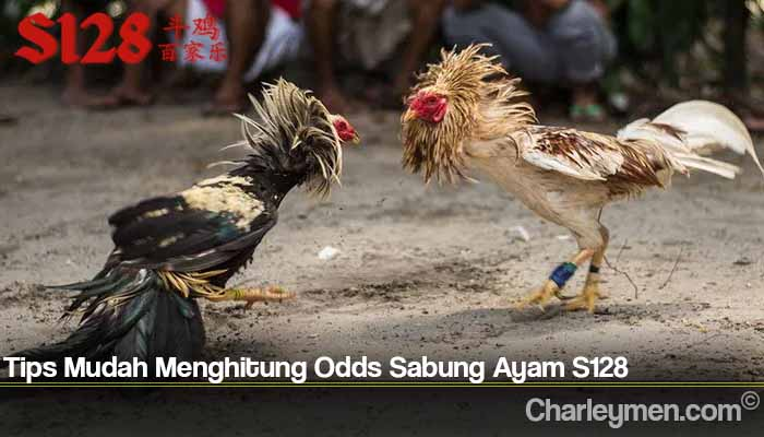 Tips Mudah Menghitung Odds Sabung Ayam S128